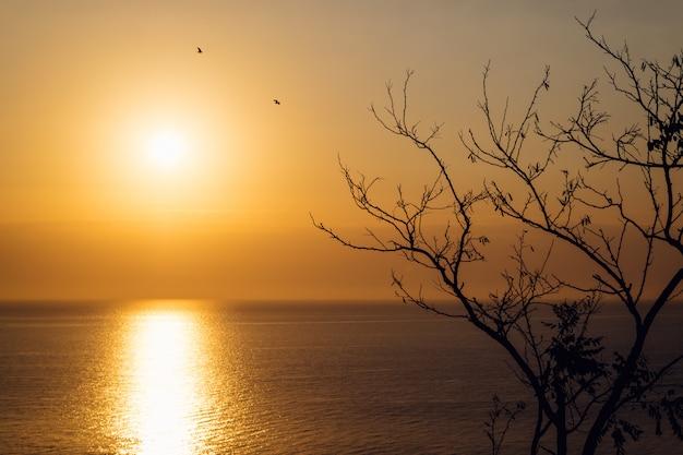 Nascer do sol sobre o mar no outono