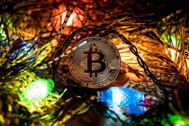 Natal de ouro bitcoin. moeda de ouro de bitcoin nos ramos de abeto. um presente para a capabalidade de ano novo.