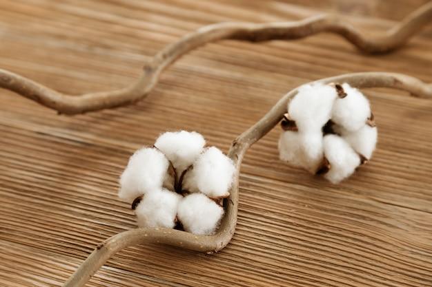 Natural com algodão planta flores na superfície de madeira. bola de algodão fofo. conceito de spa.