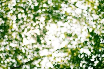 Natural verde turva Resumo para plano de fundo