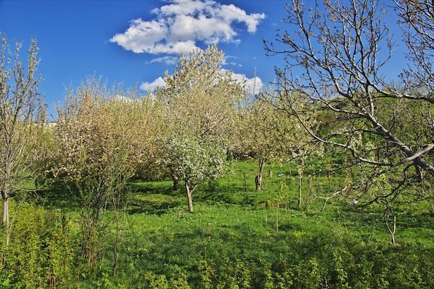 Natureza das montanhas do cáucaso na armênia