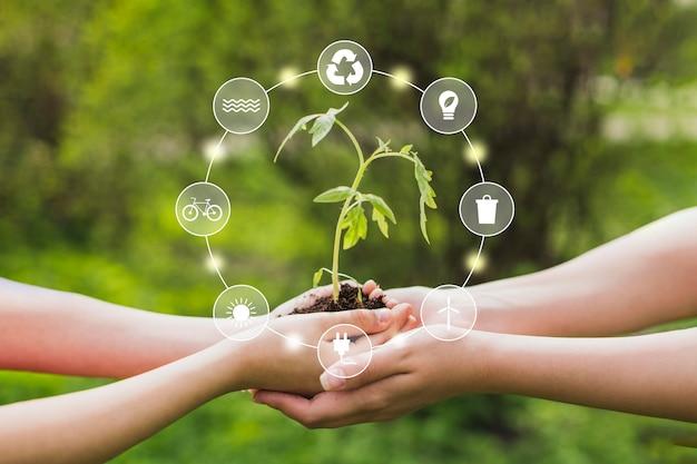 Natureza e energia renovável