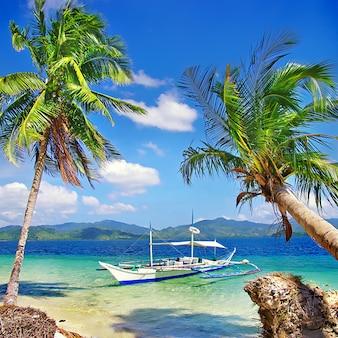 Natureza incrível das filipinas.