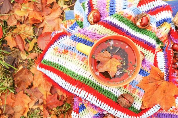 Natureza morta com a xícara de chá de cerâmica e folhas de outono no jardim de outono.