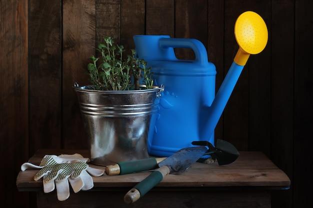 Natureza morta com ferramentas de jardim e mudas de flores.