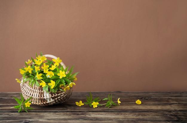 Natureza morta com flores amarelas da primavera na cesta