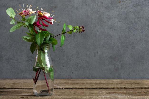Natureza morta com um lindo buquê de flores de madressilva. fundo de férias ou casamento