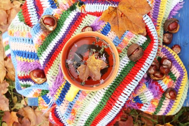 Natureza morta com xícara de cerâmica de chá de ervas e folhas de outono na manta listrada quente quadriculada brilhante no jardim outono.