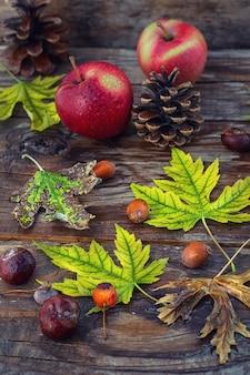 Natureza morta folhas de outono