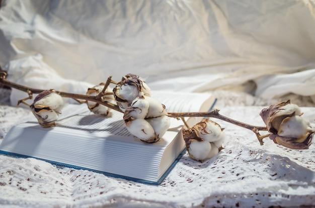 Natureza morta, incluindo um livro, uma planta de algodão e uma toalha de mesa aberta, luz suave e quente