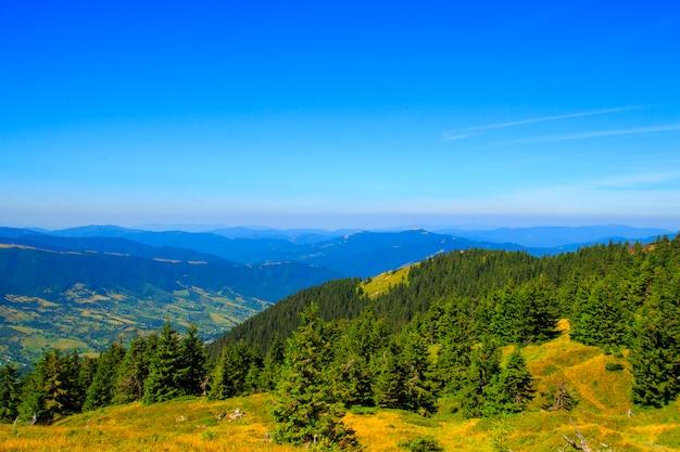 Natureza nas montanhas, belas paisagens, belas paisagens montanhosas, as montanhas dos cárpatos