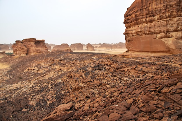 Natureza no deserto perto de al ula, arábia saudita
