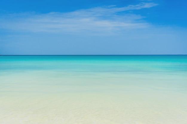 Natureza tropical, praia limpa e areia branca