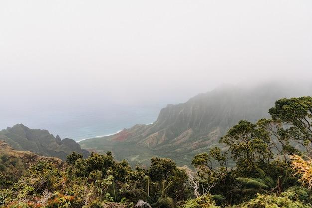 Nebuloso parque estadual kōke'e no havaí, eua