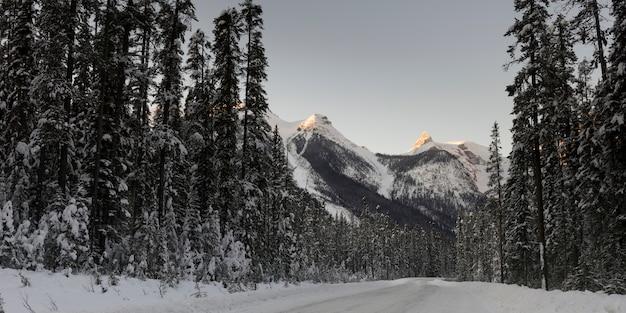Neve coberta, estrada, com, montanha, em, inverno, lago esmeralda, yoho, parque nacional, columbia britânica, ca