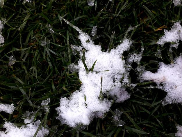 Neve e gelo descongelando no chão de grama