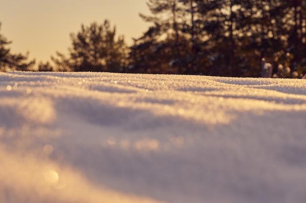 Neve em primeiro plano em uma noite gelada de inverno ao pôr do sol