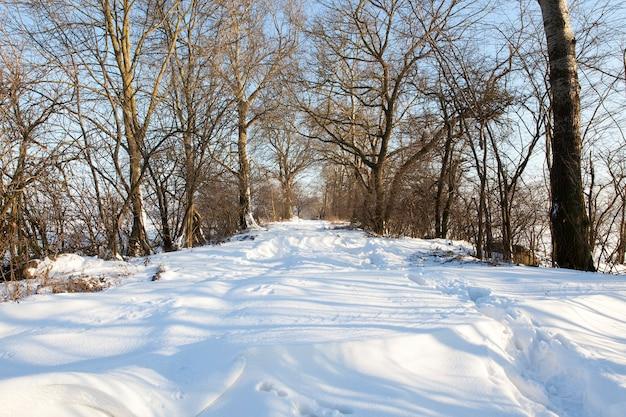 Neve fotografada após uma nevasca durante uma geada. close com estrada de pouca profundidade