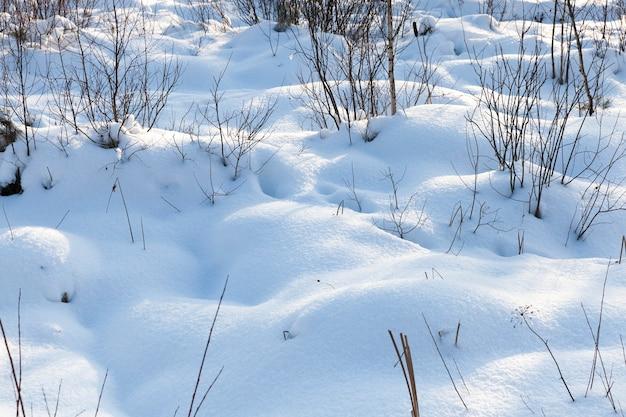 Neve no inverno