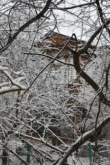 Neve nos galhos do parque no inverno