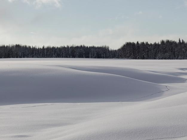 Neve, trações, ligado, um, lago congelado, ápice, lago, columbia britânica, rodovia, 97, columbia britânica, canadá