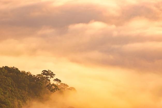 Névoa da montanha no nascer do sol, névoa no nascer do sol, névoa sobre a montanha durante o nascer do sol
