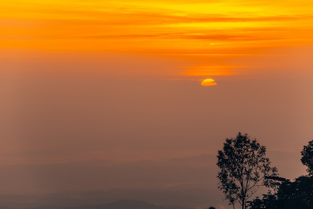 Névoa da montanha no nascer do sol
