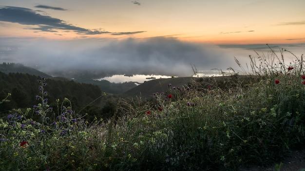 Nevoeiro ao nascer do sol