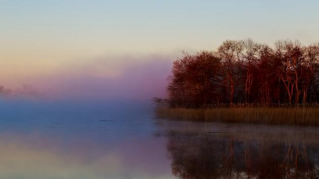 Nevoeiro céu rio água baía floresta