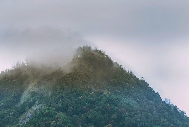 Nevoeiro cobrindo o pico da montanha de western ghats, distrito de kanyakumari, índia