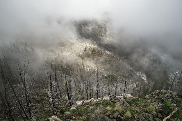 Nevoeiro e nuvem paisagem vale da montanha