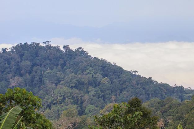 Nevoeiro, e, nuvem, vale montanha, paisagem