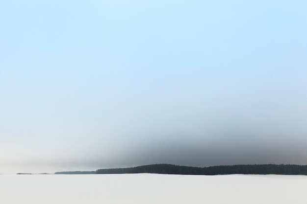Nevoeiro na floresta de inverno após a última nevasca e pouca visibilidade