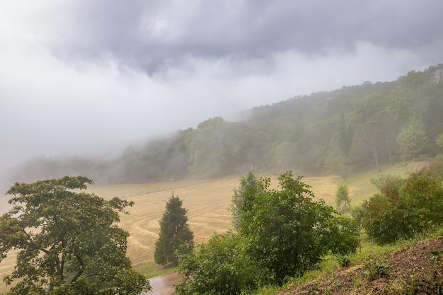 Nevoeiro sobre o parque do palácio real em massandra, crimeia
