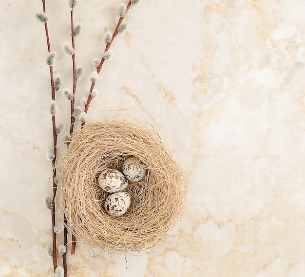 Ninho com ovos de codorna e galhos de salgueiro em mármore