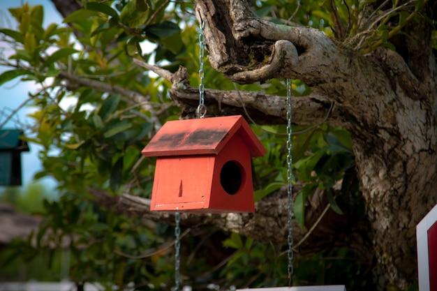 Ninho de pássaro colorido na árvore