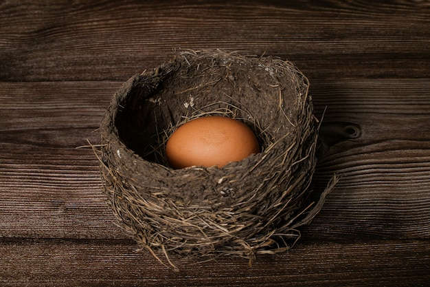 Ninho de pássaro real com ovo isolado na mesa de madeira.