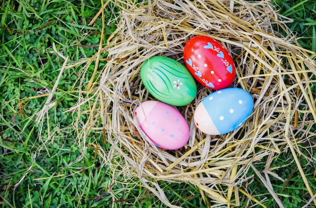 Ninho ovo colorido decorado festivo na grama
