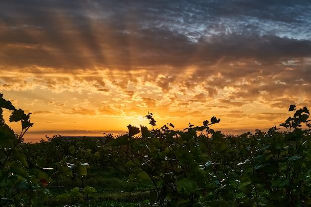 No início da manhã de outono, os raios do sol rompem as nuvens