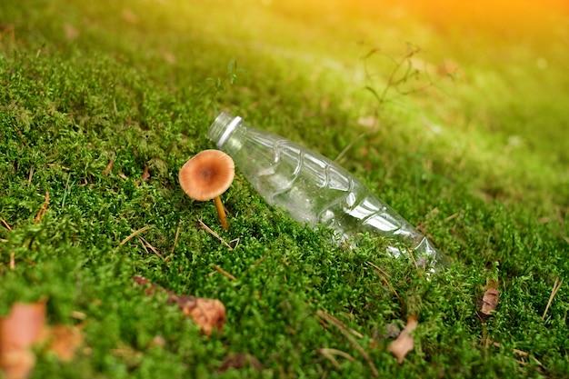 No musgo ao lado do cogumelo há uma garrafa de plástico jogada fora por uma pessoa