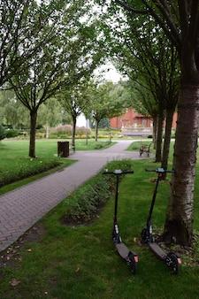 No parque de verão, há duas scooters presas a uma árvore. um caminho de azulejos desce pelo beco
