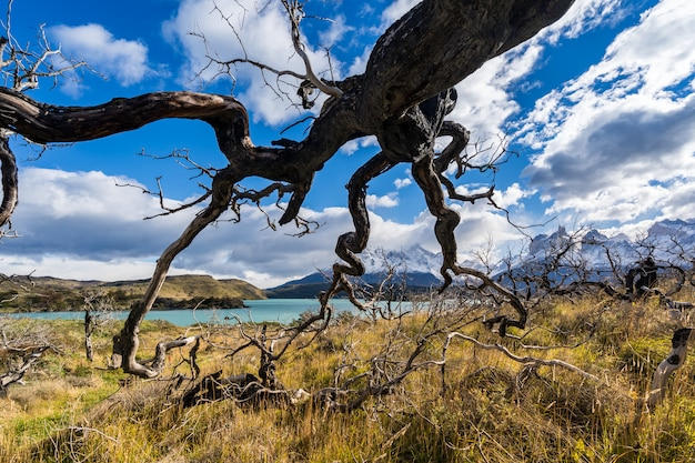 No parque nacional torres del paine, patagônia, chile, lago del pehoe.
