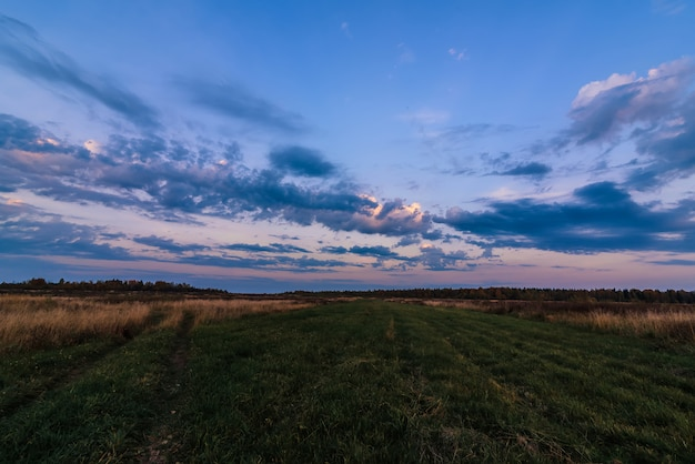 Noite de outono paisagem em um campo com floresta no horizonte