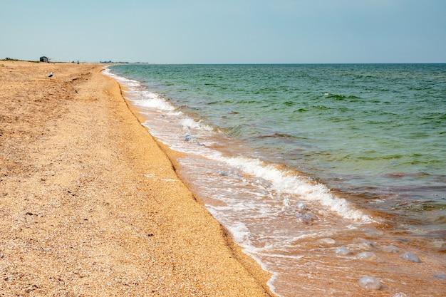 Noite de verão em uma praia do mar de azov no verão