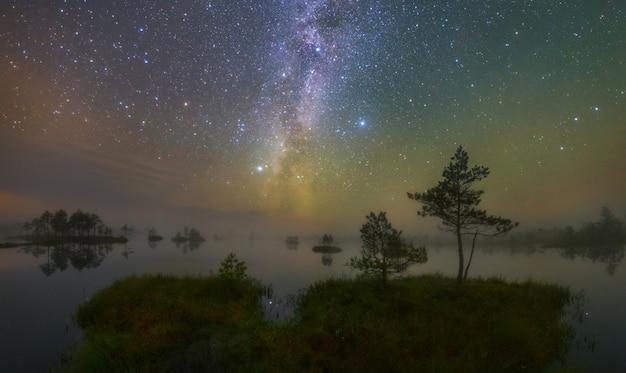 Noite estrelada no pântano yelnya, bielorrússia