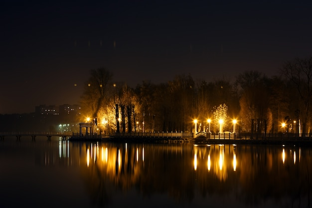 Noite paisagem iluminada com postes