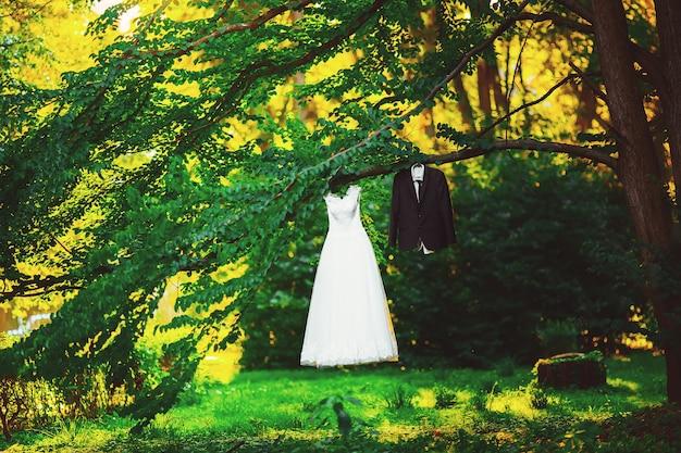 Noiva e noivo de traje de vestido em uma árvore no parque
