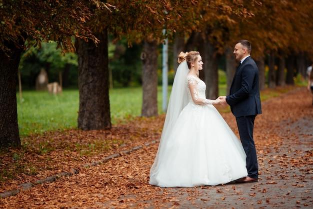 Noiva e noivo em um parque beijando. casal recém-casados noivos em um casamento na floresta verde natureza estão beijando o retrato da foto.