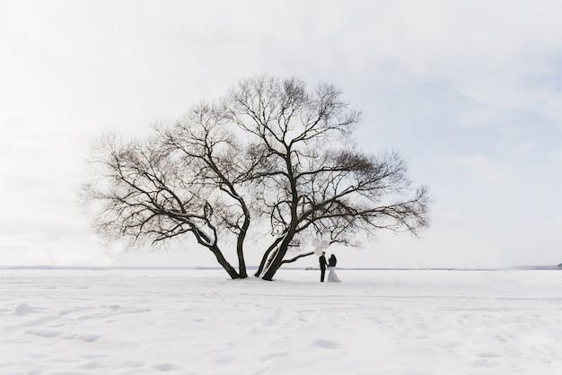 Noiva e noivo entre paisagem de neve com grandes balões brancos
