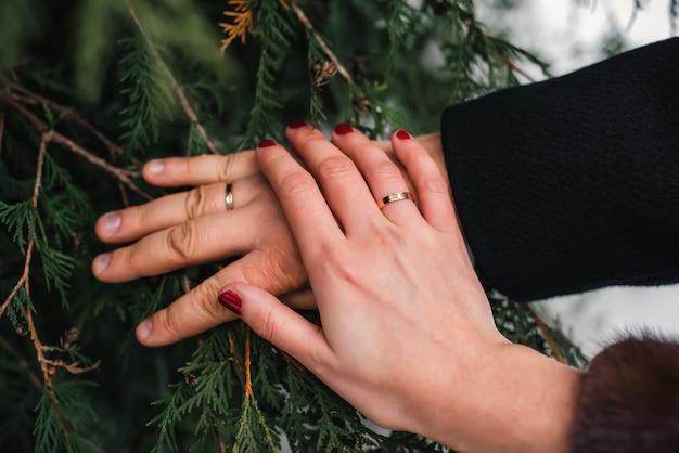 Noiva e noivo mãos com alianças